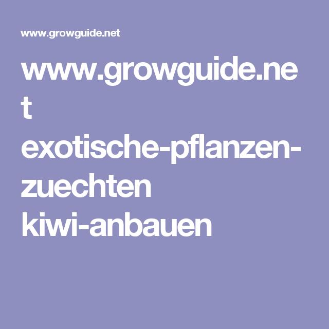 Www.growguide.net Exotische Pflanzen Zuechten Kiwi Anbauen