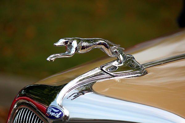 Running For Ford By Rosanne Jordan Car Hood Ornaments Jaguar
