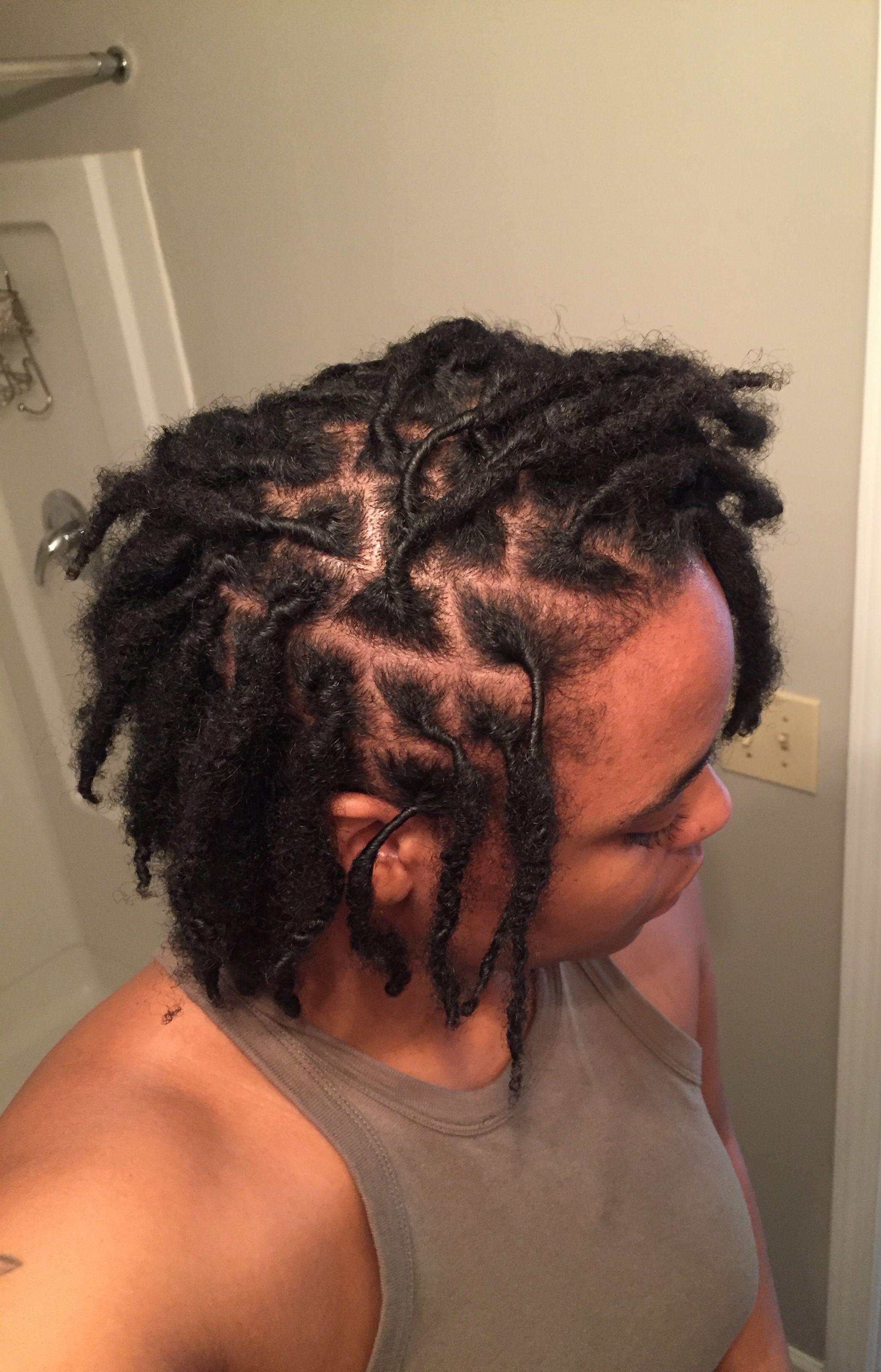 3 Month Starter Locs 2 Strand Twist Locs Hairstyles Natural Hair Styles Dreadlock Hairstyles