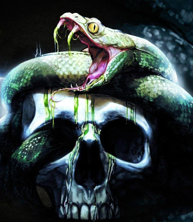 Skull  Snake  shitshit  Pinterest  Calaveras