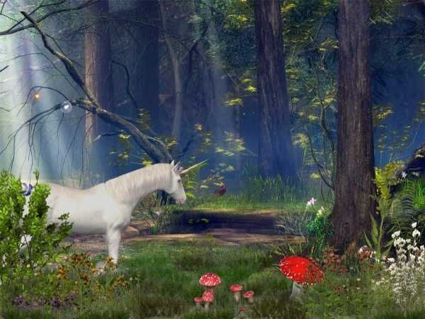 free 3d animated screensavers enchanted forest 3d screensaver