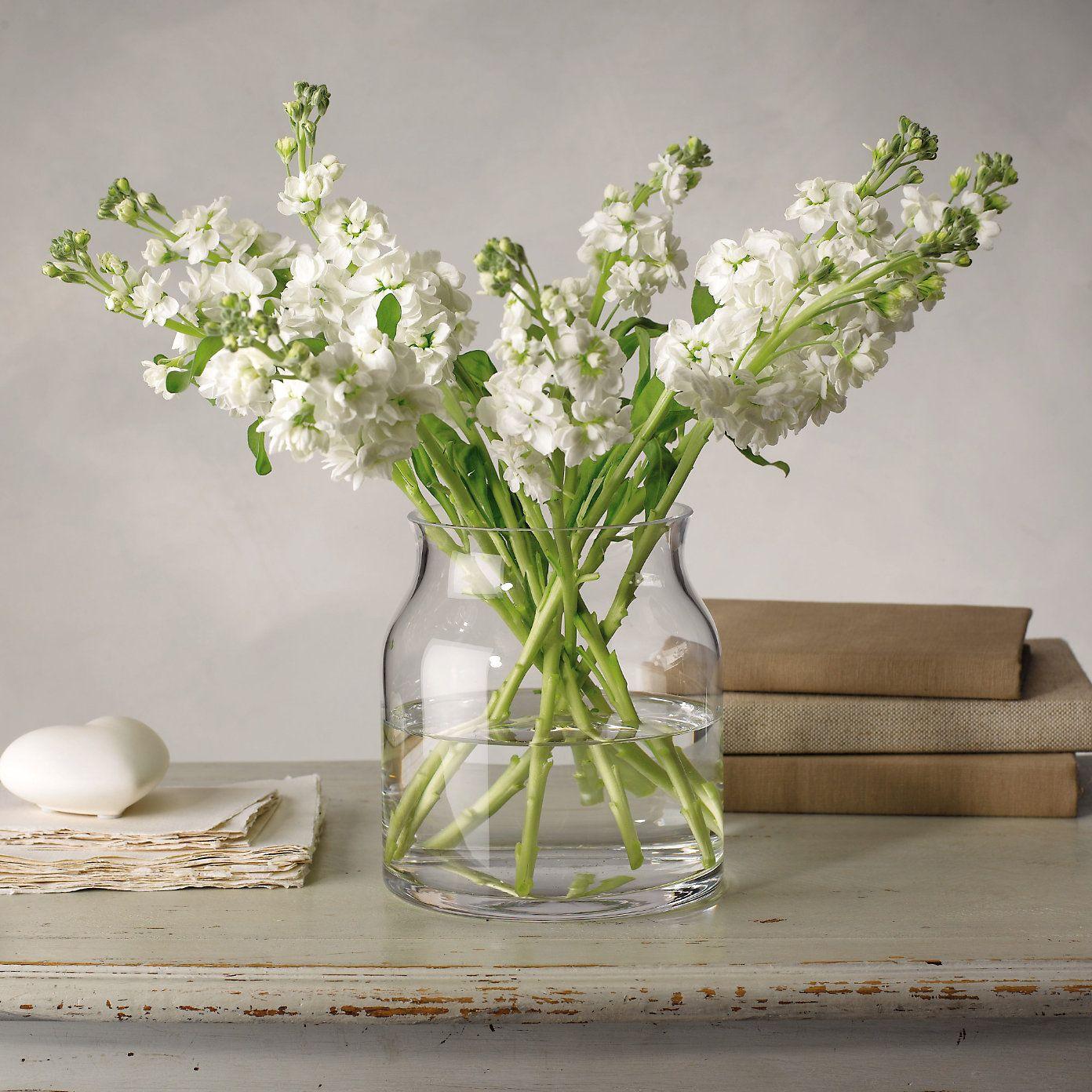Pablo glass vase small the white company naturalist home the white company mightylinksfo