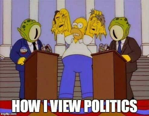 What Is Your View On Politics Simpsons Funny The Simpsons Homer Simpson