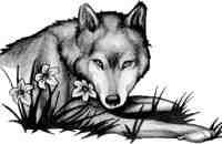 wolf at rest wolf queen tribal howling wolf tribal wolf rage of the ...