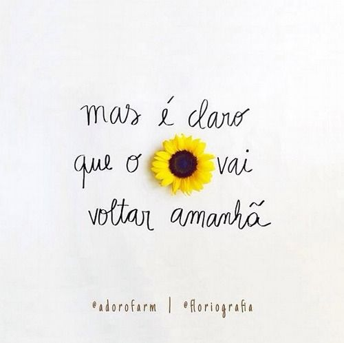 Tumblr Frases Girasoles Frases Y Poemas Y Frases