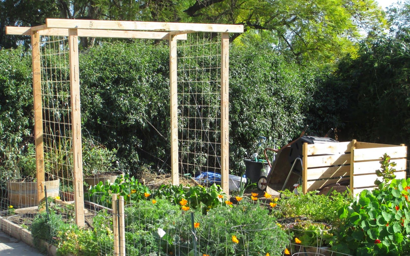 Pea Trellis Ideas Part - 26: Andieu0027s Way: Trellis Ideas For Tomatoes, Cucumbers, Beans, Peas, Melons And
