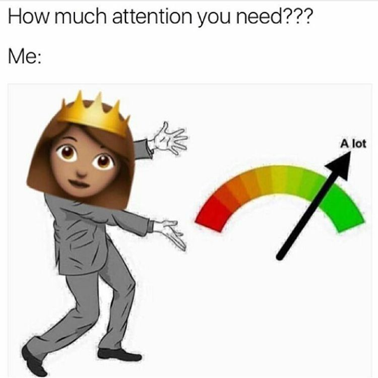 How Much Attention You Need Funny Memes Funny Gif Attention