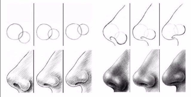 10 Amazing Nose Drawing Tutorials & Ideas - Brighter Craft