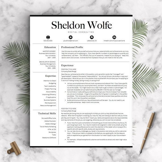 Professional Resume Template for Word and Pages Professional CV - professional profile template