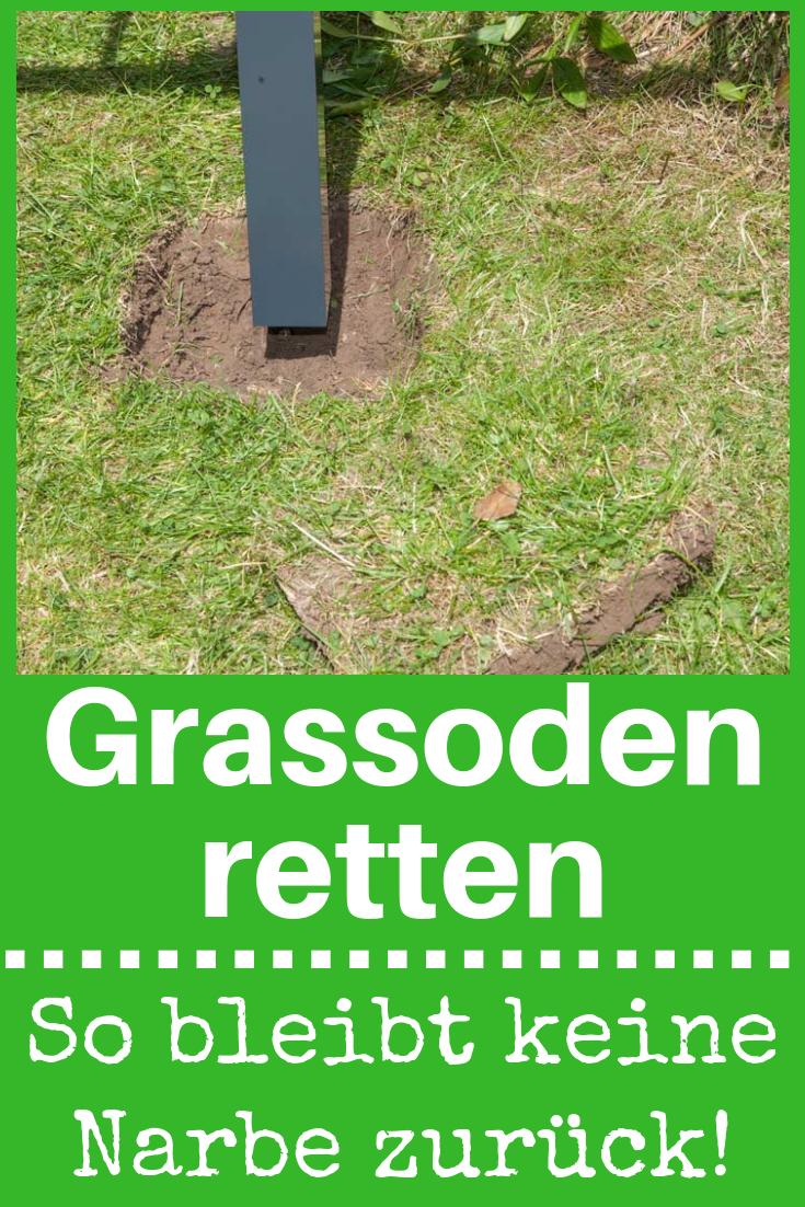 Metall Zauntor Selbst De Zaun Garten Umgraben Zauntor
