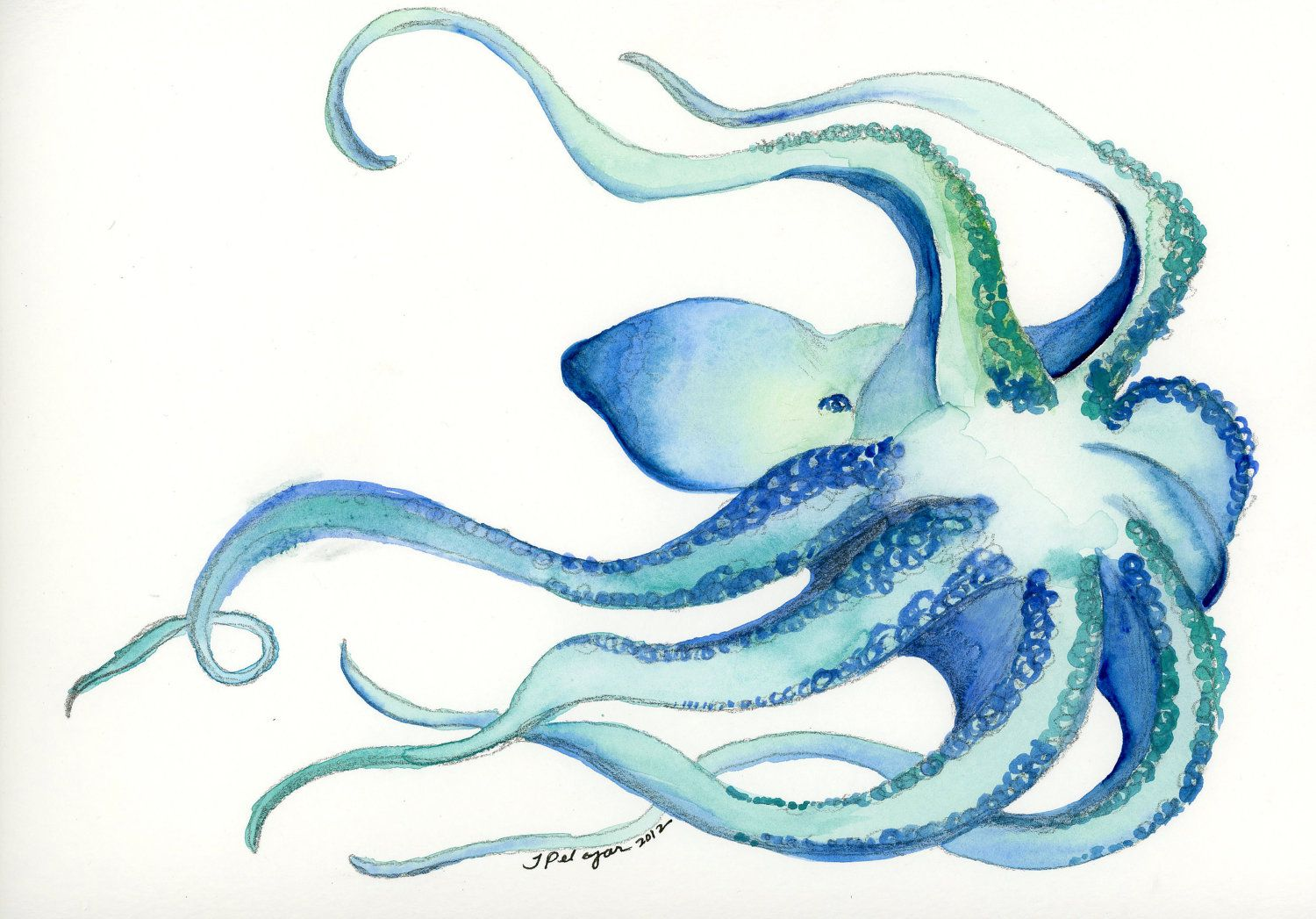 Cool Octopus Art Cool Octopus Print Watercolor Illustration By Tiffany Pelczar