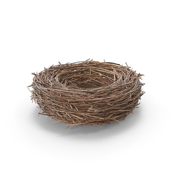 Bird Nest Images Available For Download As Pngs With Transparency Or Layered Psds On Pixelsquid Com Birds Nest Image Nature Images Bird Nest