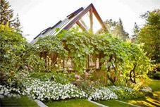 Bella Luna Farms Grapevine Covered Dining Room World S