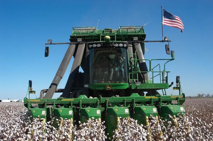 Cotton Harvest Agriculture Photos Farm Life Southern Heritage