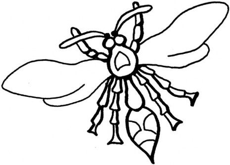 Fly Coloring Papers Click The Wasps Coloring Page To View Printable Version Or Color It Insect Coloring Pages Butterfly Coloring Page Coloring Pages