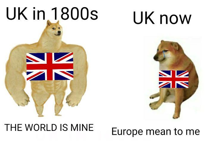 Then Now Dog Meme History Memes Then Vs Now Dog Memes