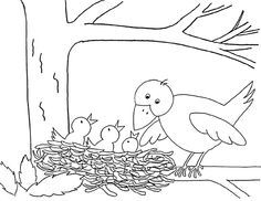 vogelnest tekening zoeken kleurplaten vogels