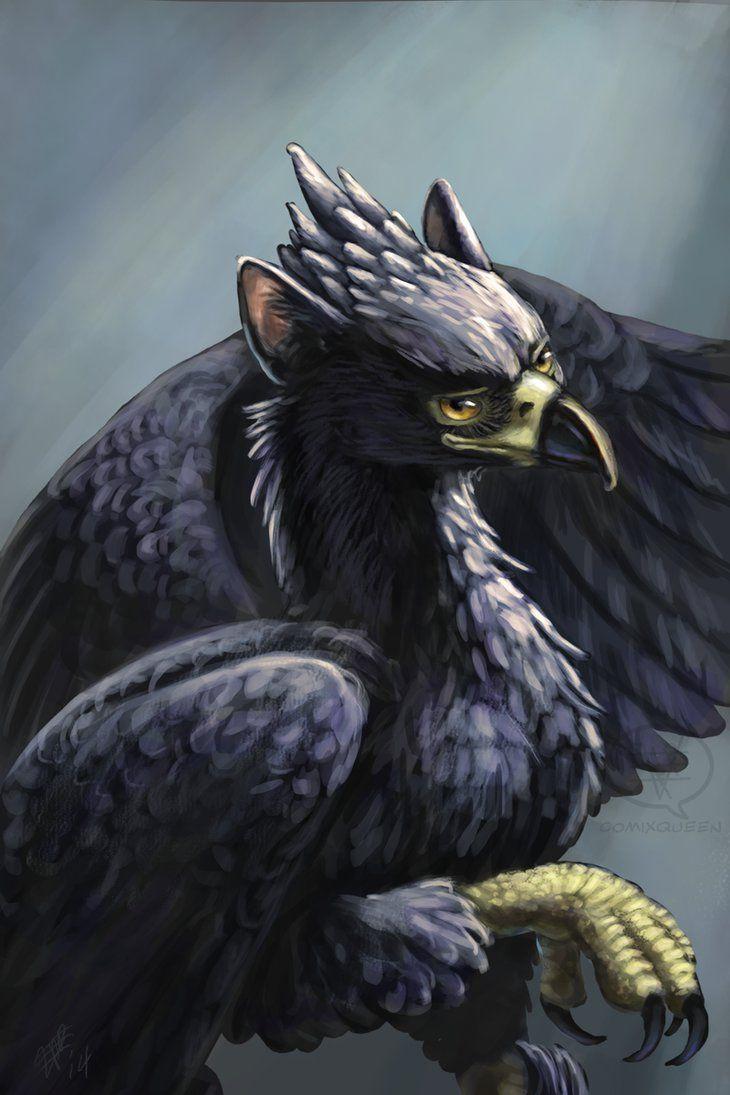 The Black Gryphon Griffin Mythical Phoenix Bird Art Fantasy Creatures