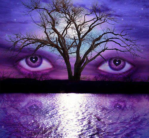 Pin By Lynn Morgan On Boden Colour Me Happy Campaign Purple Eyes Purple Purple Love