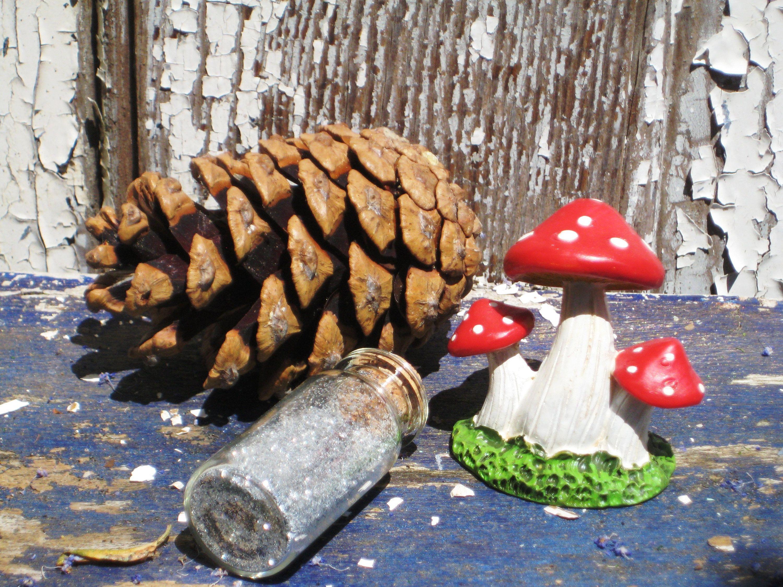 Gnome Garden: Mushroom Accessory,Fairy Garden,Magical,Fairy Mushroom