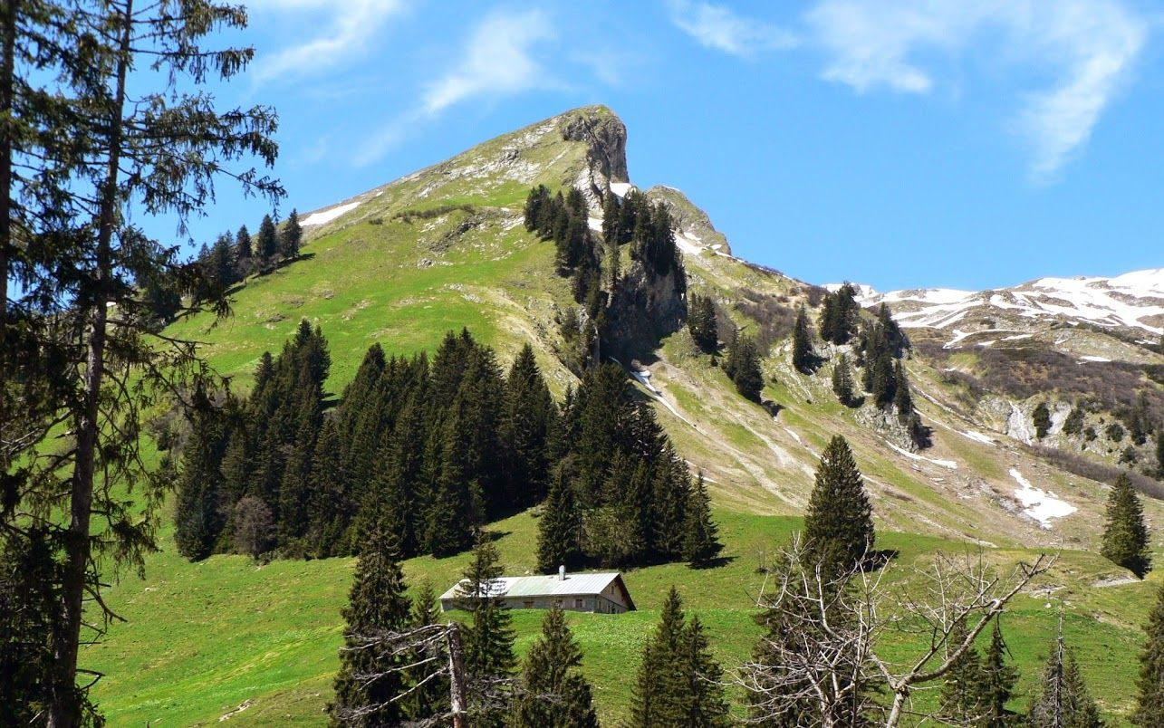 Allgäu Halbtagestouren Oberstdorf Sonthofen Hindelang #naturallandmarks