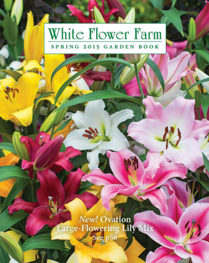 69 free seed and plant catalogs white flower farm bulb and plant 69 free seed and plant catalogs white flower farm bulb and plant catalog mightylinksfo