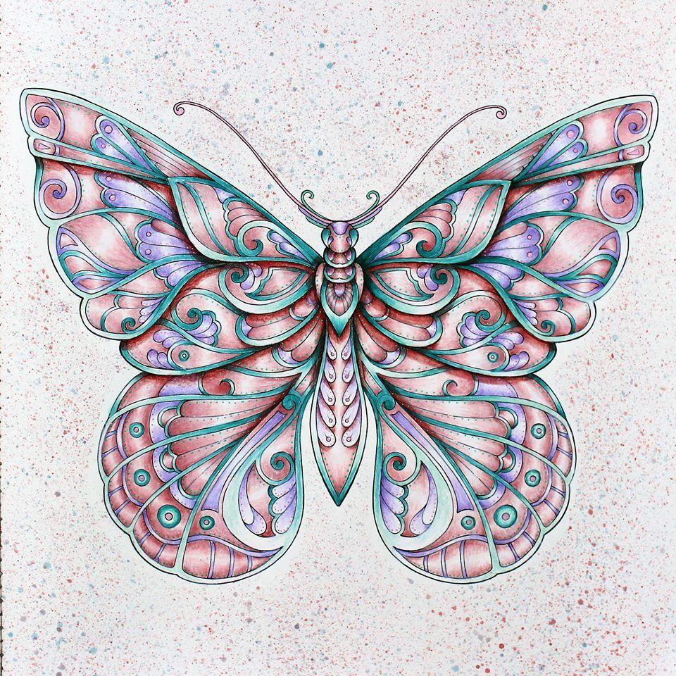 Pin de Rebecca Campbell en butterflies | Pinterest | Mariposas ...