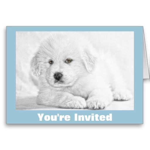 Adorable Cute Puppy Make Your Own Custom Greeting Cards