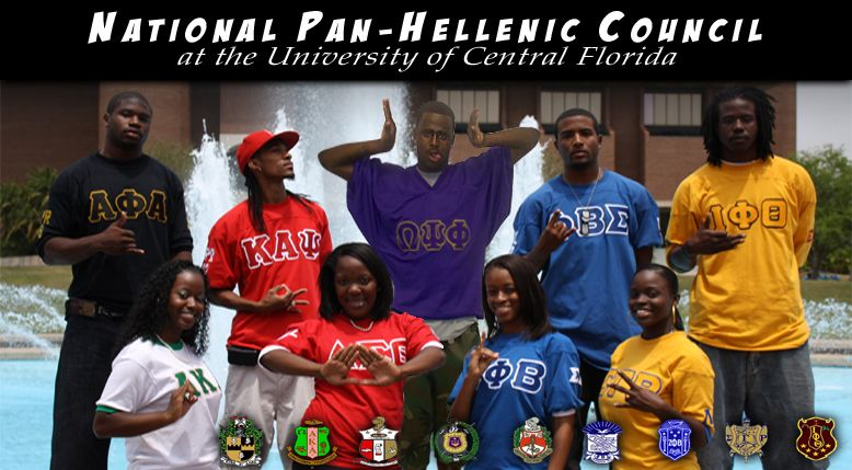 African American Panhellenic Council Greek Councils Fraternity