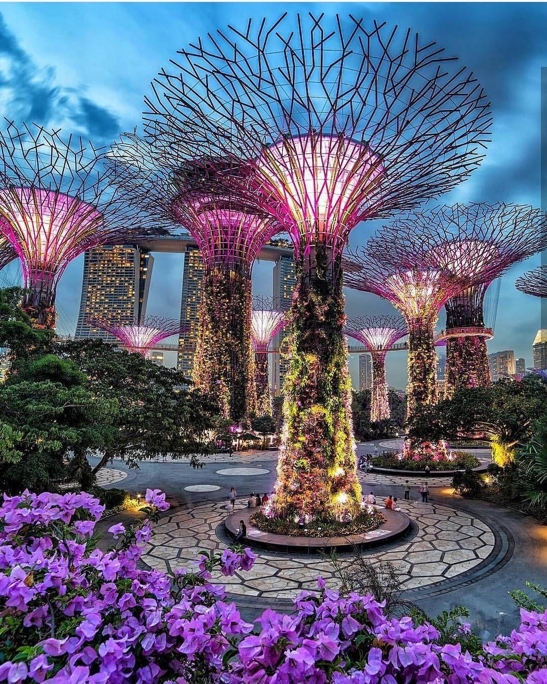 Pin By Kathrin Lange On Reisen Singapore Photos Singapore Garden Singapore Travel