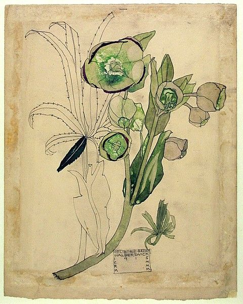 Charles Rennie Mackintosh (1868-1928) - Flower Study. Pencil and Watercolour on Paper. Circa 1915.