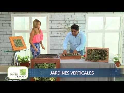 Cuadro Vivo - Jardin Vertical