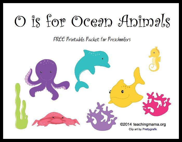 O Is For Ocean Animals Letter O Printables Preschool Letters Ocean Theme Preschool Letter O Activities