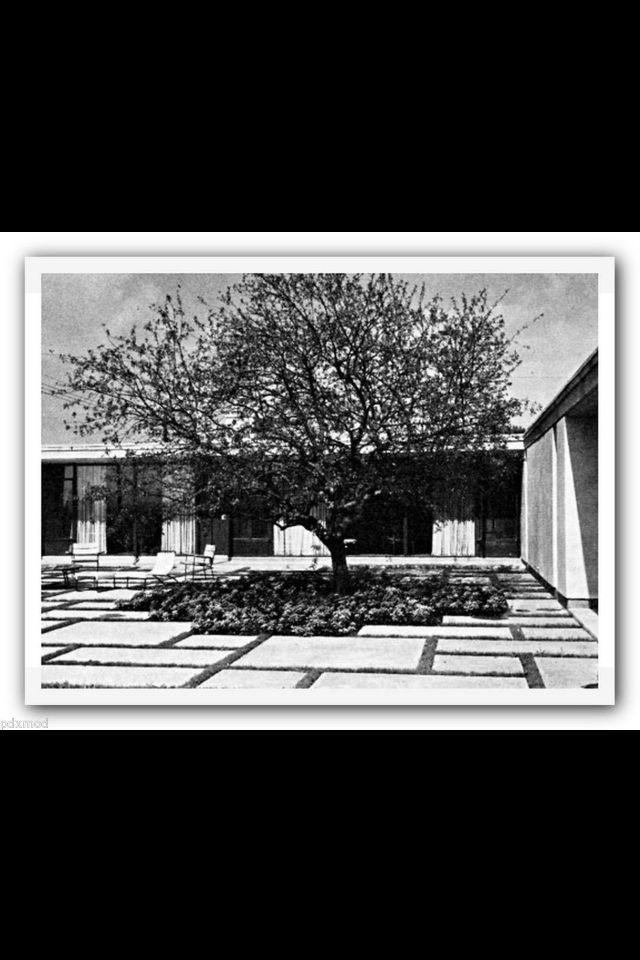 Large Square concrete pavers as the yard. MCM. | Mid Century ...