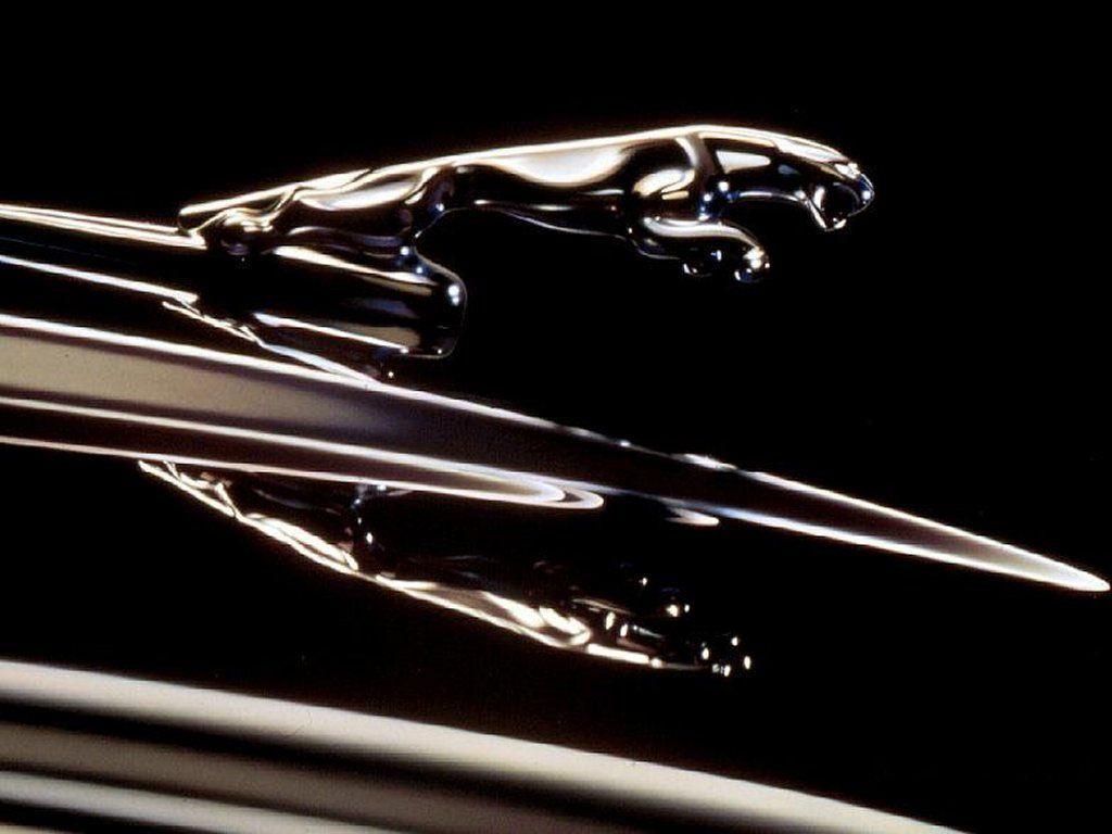 I love the jaguar car logo so cool cars hood ornaments i love the jaguar car logo so cool buycottarizona
