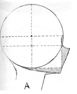 Blog Del Dibujo Proporciones De La Cara Tipo Manga Perfil Pasos Para Dibujar Rostros Cuaderno De Dibujos De Bocetos Tutoriales De Anime