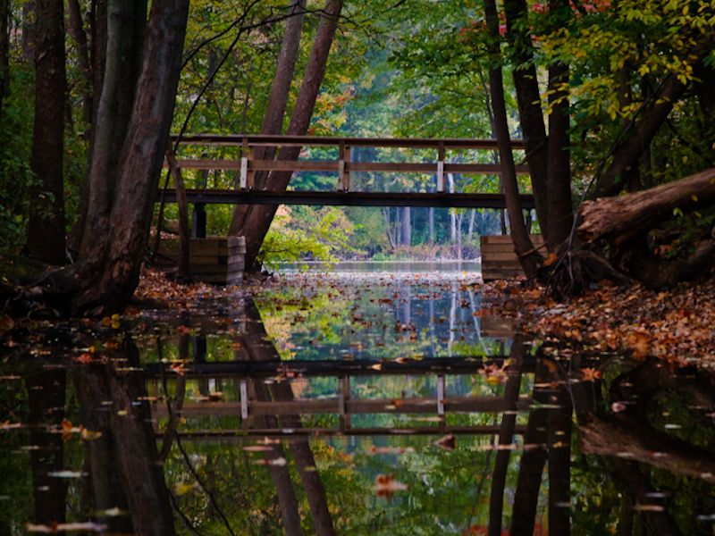 Chain O Lakes State Park A Great Place To Canoe Albion Indiana State Parks Illinois State Parks Indiana Travel