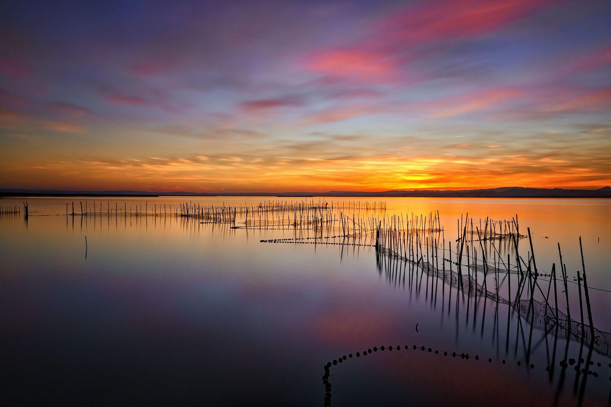 Reflections Reflections at Albufera's lake. Valencia.