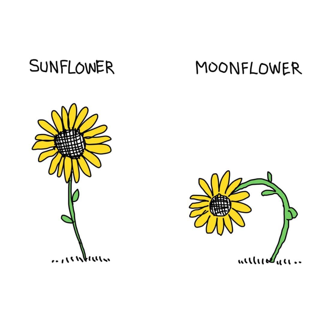 Sunflower with leaves LR Embroidered PATCH//BADGE