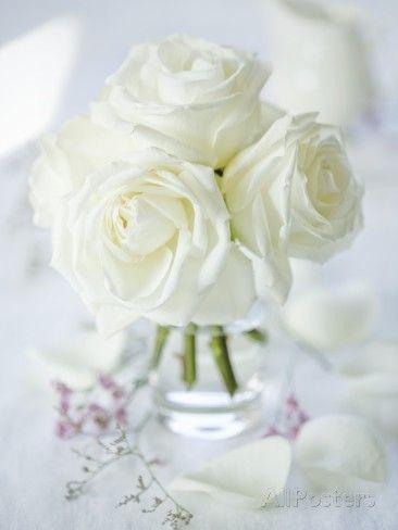 white roses vase - Google Search