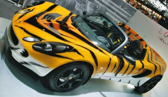 Custom car paint job - tiger stripes | Every Color of the Rainbow ...