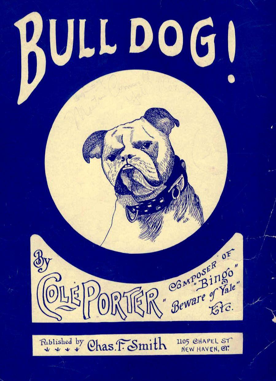 Bulldog Bulldog Jazz Poster Bulldog Art