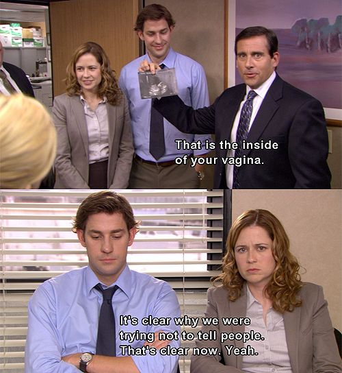 The Office. Oh Michael.... he doesn't even know that a baby is in a woman's uterus. I hope he does now since we learned on the finale that he has kids. Poor Pam and Jim. So thrilling for us & they are thrilled to be having a baby (both on the show they're happy and JK and JF were thrilled at how 'real' their characters were) but they have to put off telling the office as long as possible to try and hold off as many inappropriate comments as possible, only to be outed by Michael on accident!