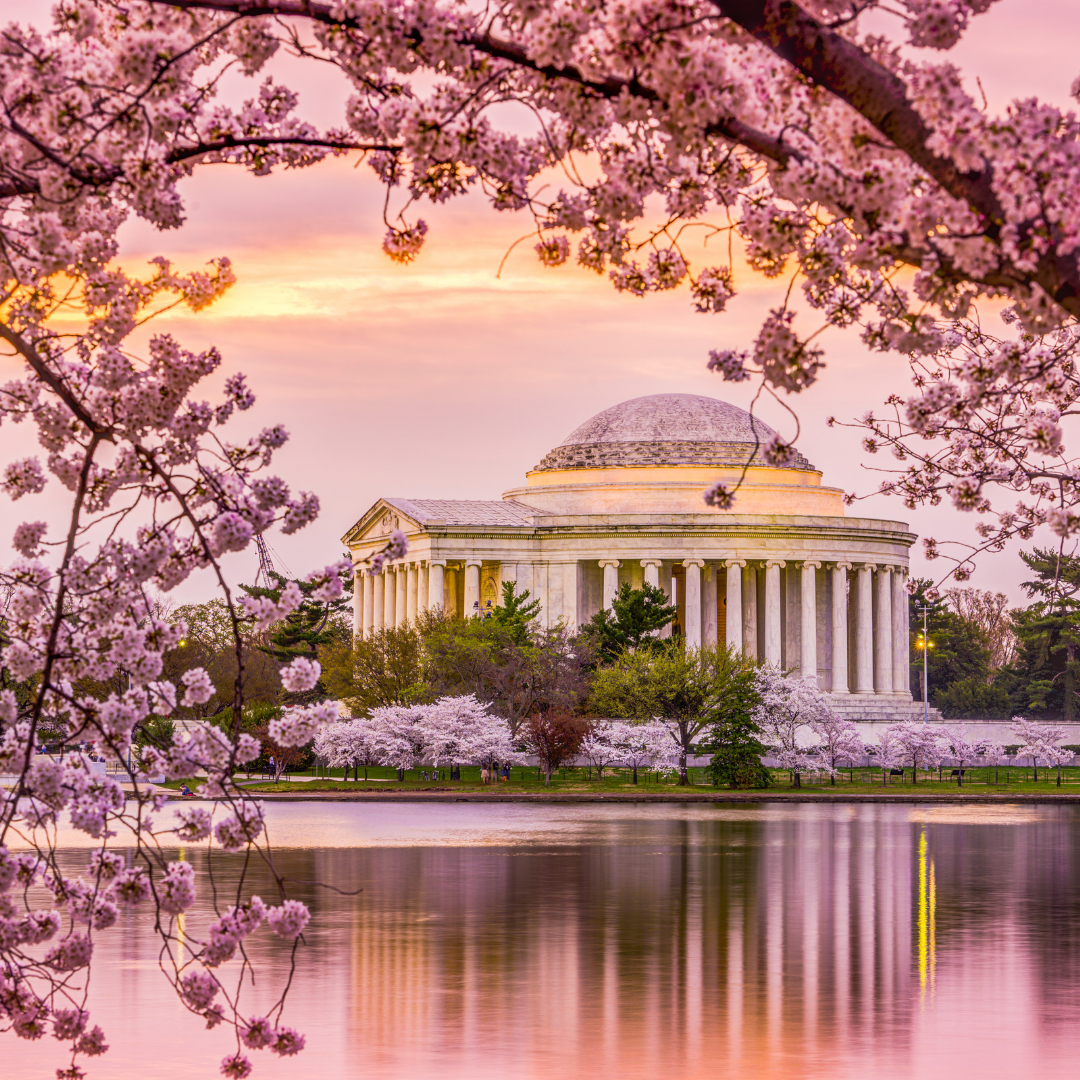 Cherry Blossom Festival Washington Dc One Of These Days Beautiful Nature Beautiful Places Places