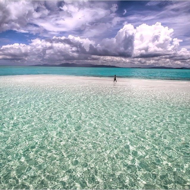 Who's interested in a walk at the crystal clear waters of Onok island of Palawan, Philippines? ✦ Photo credits: @jaypeeswing ✦ Tag #worldtravelbook to be featured. ✦ Follow my other account @sharqawii #travel #YOLO #photooftheday #picoftheday #nature #tagsforlikes #instagram #bestoftheday #life #love #photo #gopro #instagram #summer #instatravel