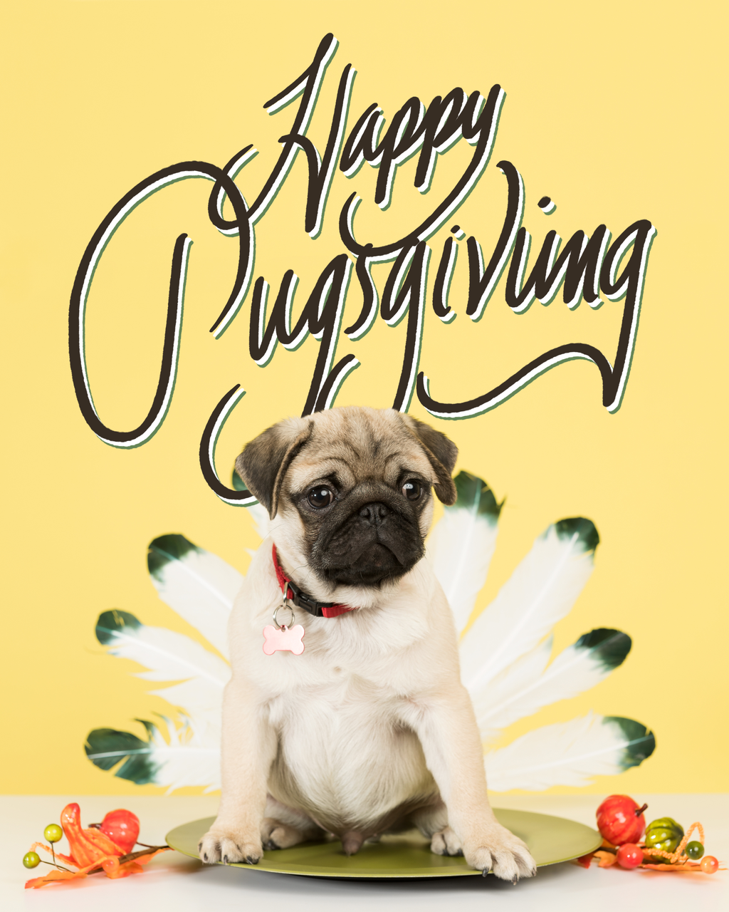 Happy Pugsgiving! Really cute dogs, Pugs funny, Pug art