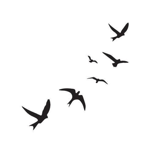 Mas Reciente Imagenes Aves Volando Cielo Estilo Tatuaje Willughby Tatuajes Semipermanen En 2020 Tatuajes De Pajaros Volando Aves Volando Pajaros Volando