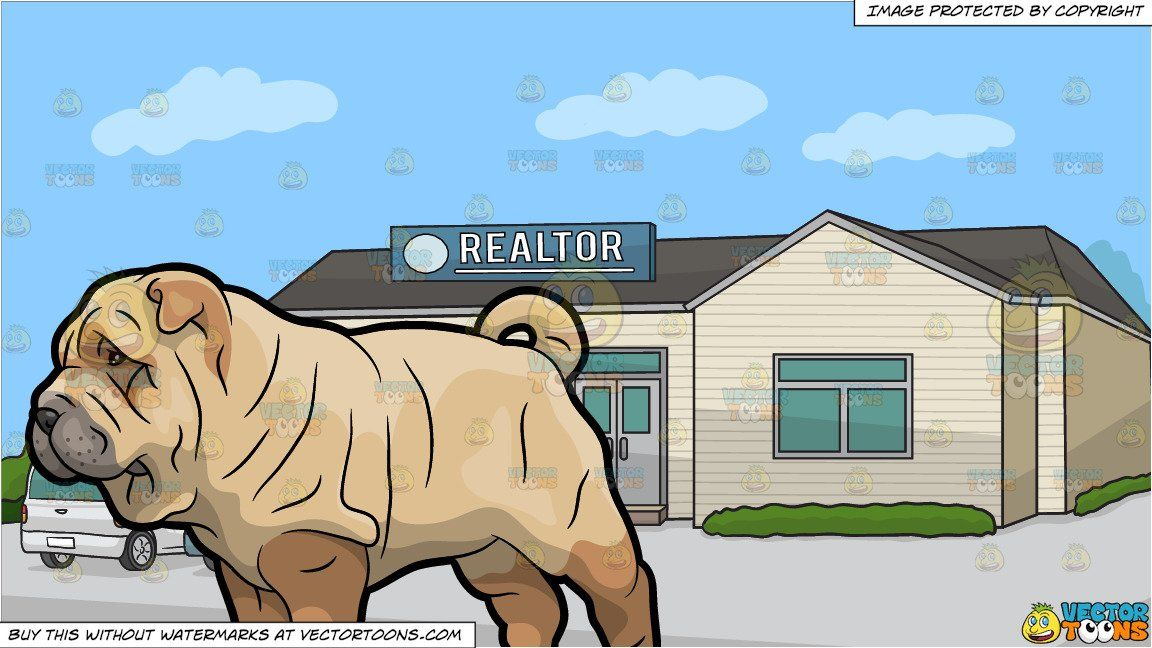 A Shar Pei Pet Dog and A Small Town Real Estate Office