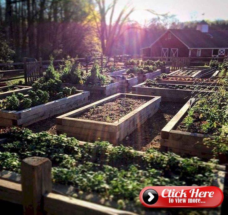 75 Stunning Backyard Vegetable Garden Design Ideas #erhöhtepflanzbeete