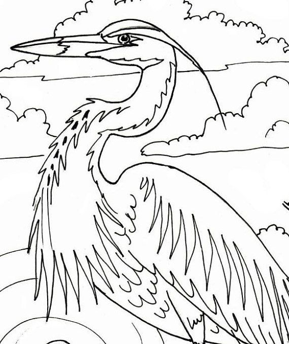 Great Blue Heron Embroidery Pattern Coloring Page Digital